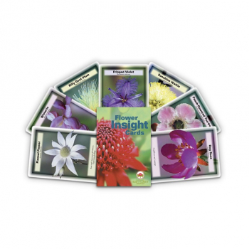 Flower Insight Cards