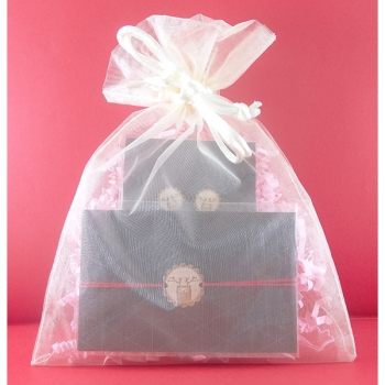 Pochette cadeau-Bijoux-Puces d'oreilles + Bracelet-Rennes- LES FOLLES MARQUISES