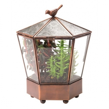 Terrarium Jardin secret