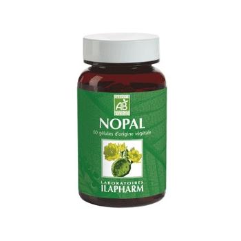 Nopal bio - absorption des graisses et des sucres