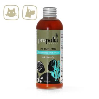 Shampoing tout pelage Miel & Propolis