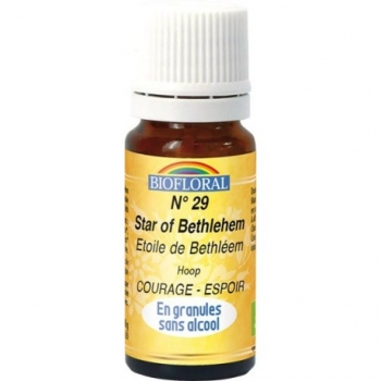 BIOFLORAL - Elixir Floral Sans Alcool en Granules – 029 ETOILE DE BETHLEEM