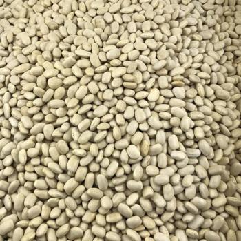 Haricot Blanc Bio en Vrac 25kg