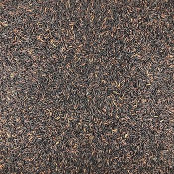 Riz Noir Bio en Vrac 25kg