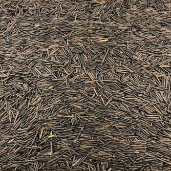 Riz Sauvage Bio en Vrac 500g