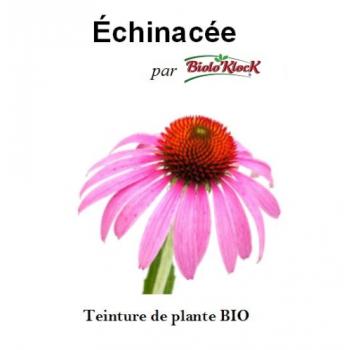 Extrait d'Echinacée - 50ml