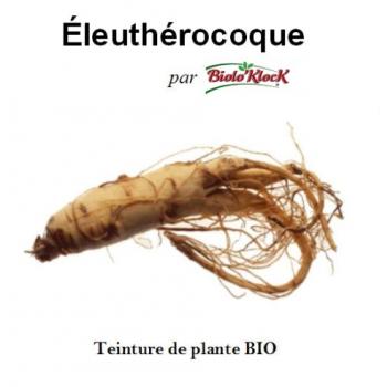 Extrait d'Eleuthérocoque - 50ml