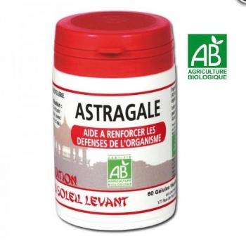 Astragale Bio - Traditions du soleil levant - 60 Gélules