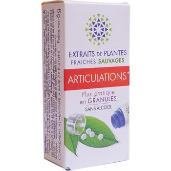ARTICULATIONS  complexe de Teinture Mère d'EPF  granules  sans Alcool 130 granulesConfort et Bien être articulaire