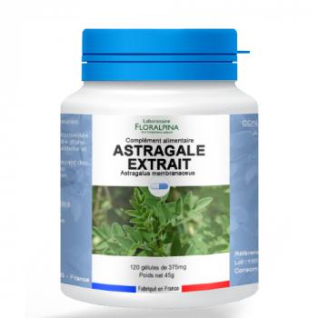 Astragale-extrait-120-gelules-1