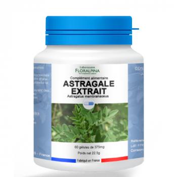 Astragale-extrait-60-gelules-1