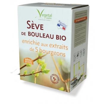 SEVE DE BOULEAU BIO enrichie aux 5 bourgeons -5 Litres non pasteurisée - RECOLTE 2020 -Port offert-