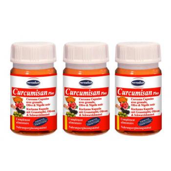 Curcuma: Curcumisan Plus Pack (3 Boites) Curcuma Fermenté avec Grenade, Olive & Cumin Noir