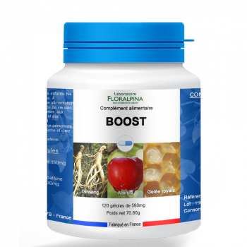 Boost-120-gelules-M236-Boost-120