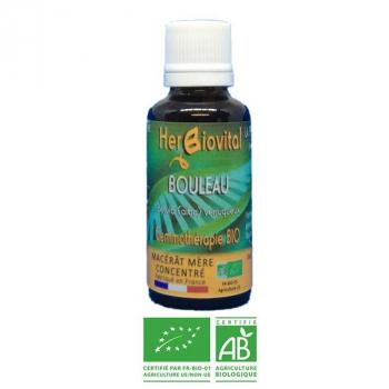 Bouleau-Gemmotherapie-Bio-Herbiovital-Cholesterol