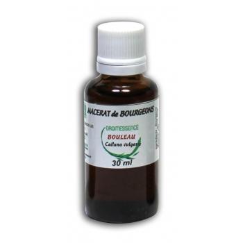 Macérat de bourgeons Bouleau 30 ml