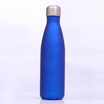 Bouteille inox bleue