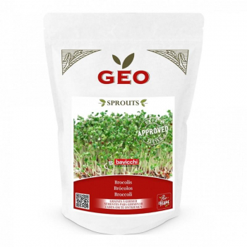 Brocolis - Graines à germer bio - 300g - Geo