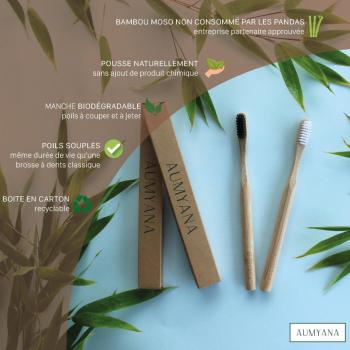 PACK ECONOMIQUE Brosse à dents bambou X4