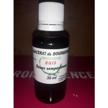 Macérât BIO de bourgeons : Buis 10 ml  DROMESSENCE