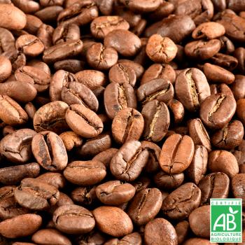 JUSTEBIO - Café Arabica - Lot de 5 sachets de 1kg