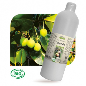 calophylle-bio-huile-vegetale-vierge-100-ml