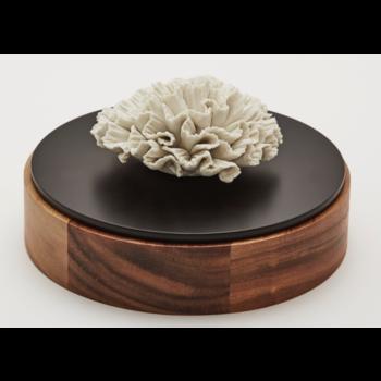 Boîte en bois et céramique / CHAN XL
