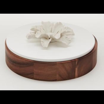 Boîte décorative en bois et céramique / OKO