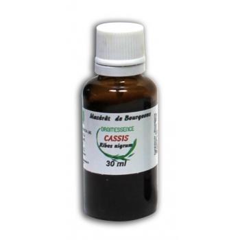 Macérât BIO de bourgeons : Cassis  30 ml DROMESSENCE