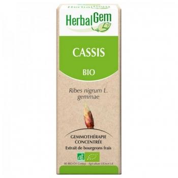 Macérat de Cassis - Concentré de bourgeons Bio - 15ml