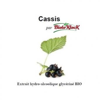 Extrait de Cassis - 100ml
