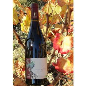 Côtes du Rhône rouge millésime 2016
