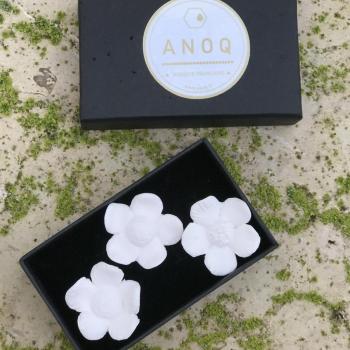 Coffret 3 fleurs diffuseur de parfum