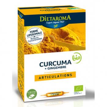 curcuma-gingembre-dietaroma