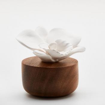 diffuseur orchidée 1