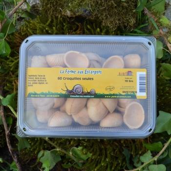 Croquilles d'escargot à remplir - 60 pièces
