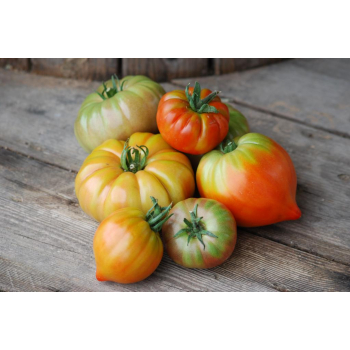 Lots de tomates anciennes bio - 5kg