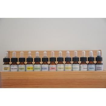 Synergie Aromacyst Run'essence