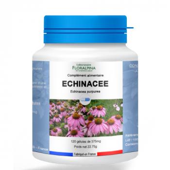 Echinacee-120-gelules-GE-UECH-12-1