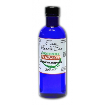 Hydrolat 'ou eau florale echinacée 1 L