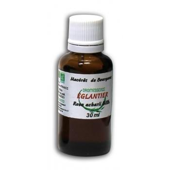 Macérât BIO de bourgeons : Eglantier 30 ml DROMESSENCE