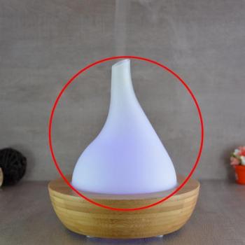 Dome en verre pour Elégansia V.2