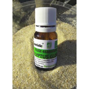 Huile essentielle d'eucalyptus globulus BIO 5ml