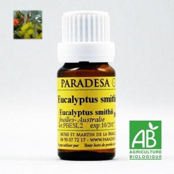 Huile essentielle BIO Eucalyptus Smithi 10ml
