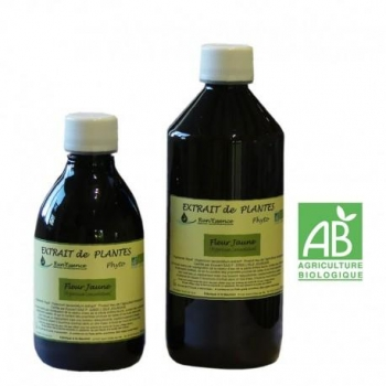 extrait plantes fleur jaune AB 550