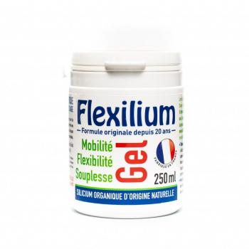 FLEXILIUM GEL pot 250 ml