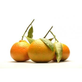 Baume à lèvres Karité Cire d'Abeilles Orange