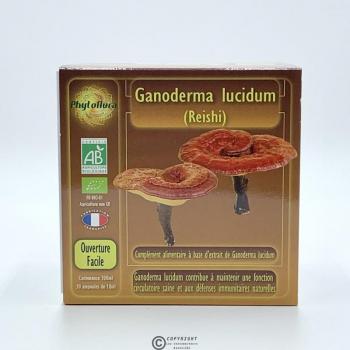 Ganoderma Lucidum (Reishi)
