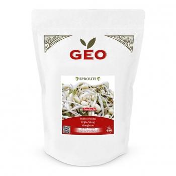 Haricot Mungo - Graines à germer bio - 700g - Geo
