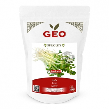 Trèfle - Graines à germer bio - 400g - Geo